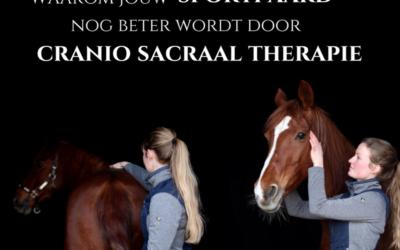 Presteert jouw sportpaard niet goed genoeg?